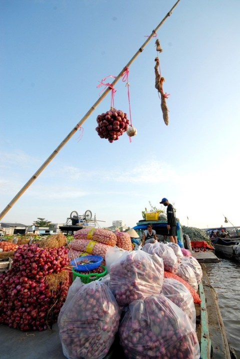 Cai Rang floating market in Can Tho province, Mekong Delta