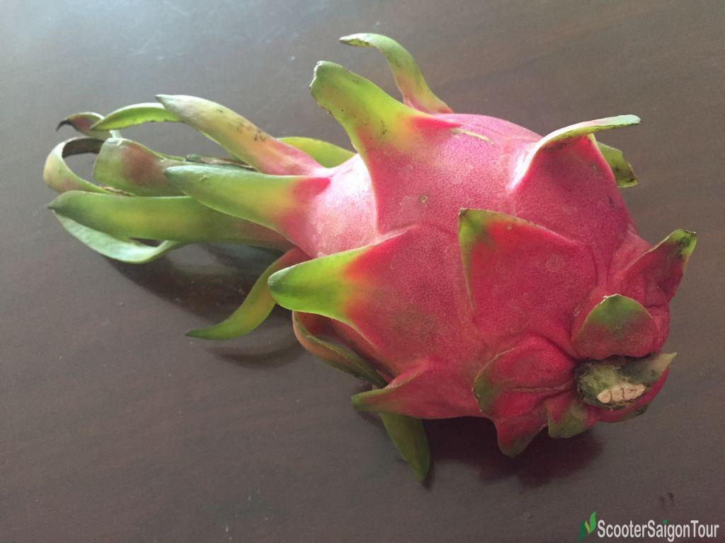 Dragon Fruit Top Fruits In Vietnam