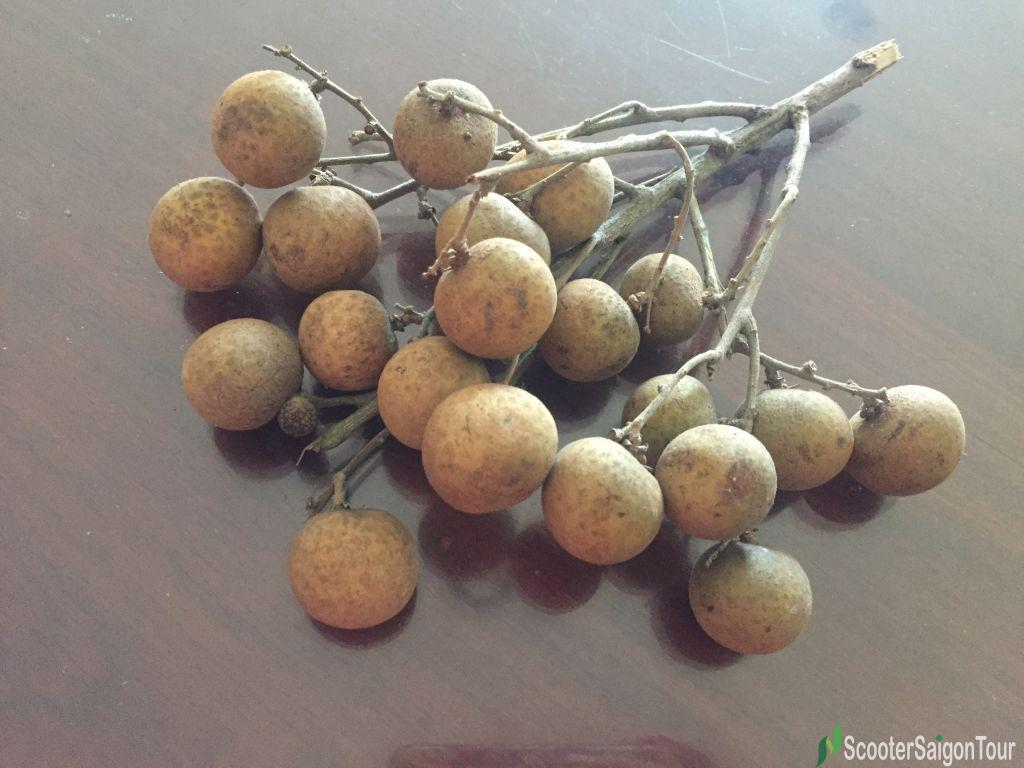 Longan Top Fruits In Vietnam