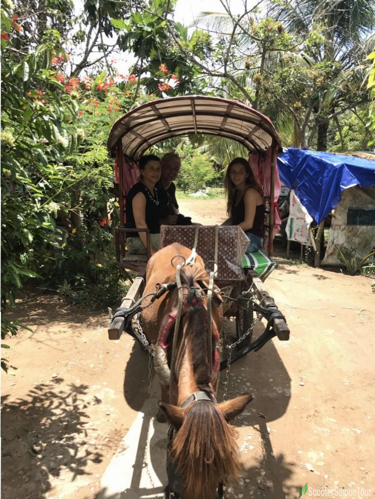 Riding Horse In Mekong Delta